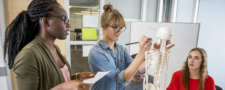 Photo of three health care students studying model of a skeleton