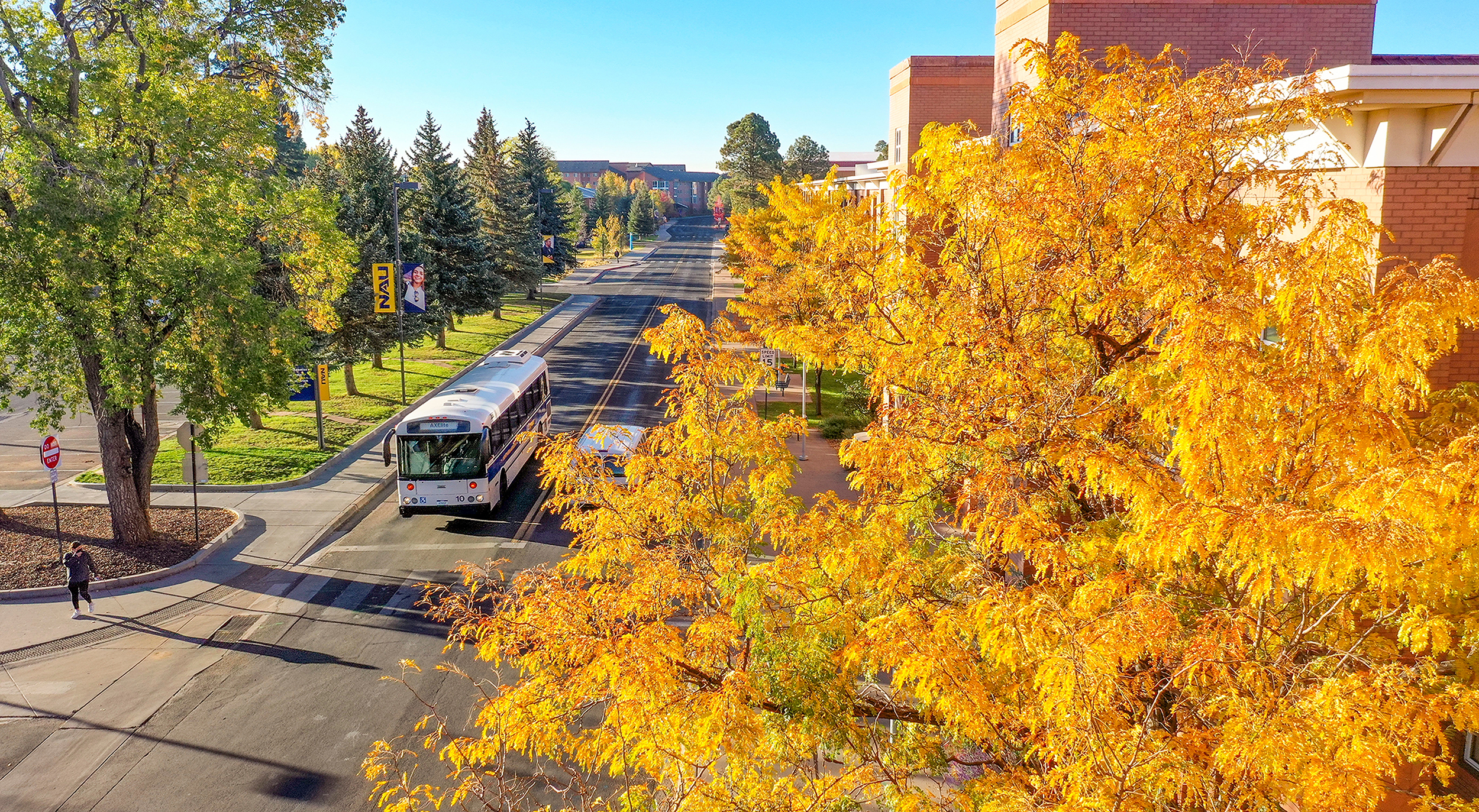 Aerial photo of the NAU campus with tree in fall colors in the foreground.