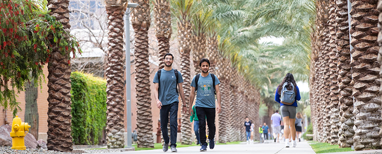 Photo of students walking on Palm Walk at ASU with palm trees lining both sides of the path