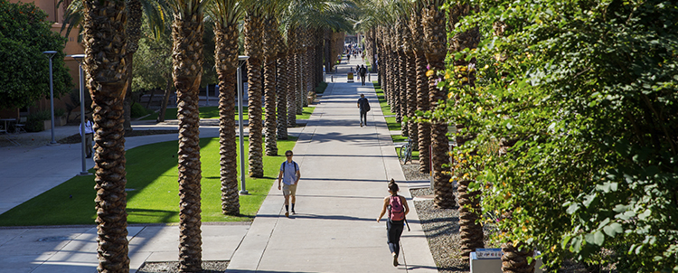 Photo of Palm Walk on ASU campus with students walking and palm trees on either side of the walk.