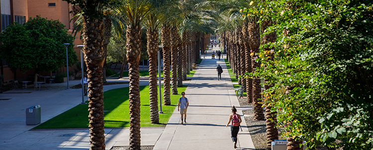 Photo of students walking on Palm Lane on the ASU Tempe campus